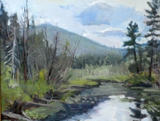 """View from the Put In, Middle Saranac Lake (2016), oil on board, 20"""" x 24"""" (2016)"""
